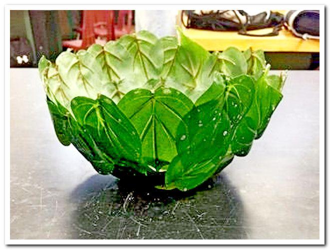Чаша из листьев