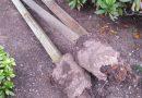 Ремонтируем забор. Как вытянуть зацементированные столбы без копания!