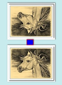 Конь12