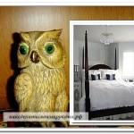 Сова со спальней