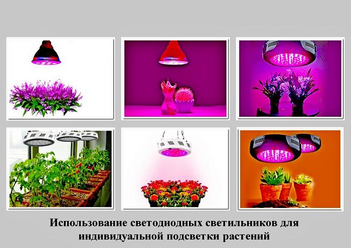 Индивидуальная подсветка растений